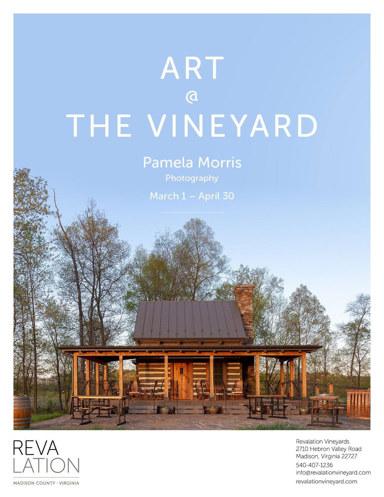 Art at Vineyard: Pamela Morris