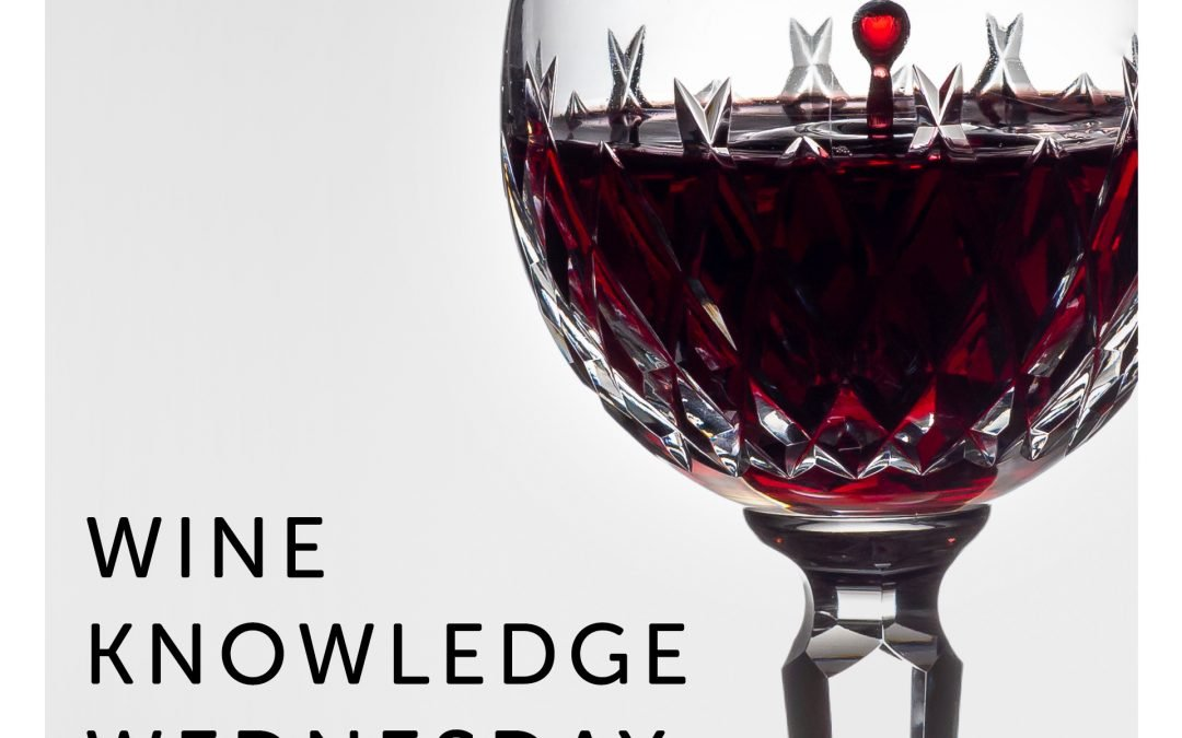 Wine Knowledge Wednesday. Wine glass with red wine